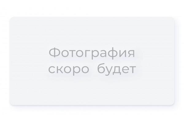 Облицовочный кирпич Terex какао рустик с песком 1НФ