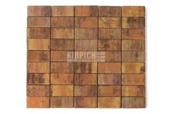 Тротуарная плитка Braer Прямоугольник Color Mix Тип Прайд